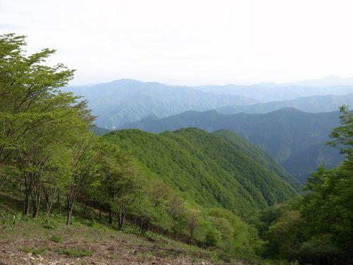 takanosuyama-2.jpg